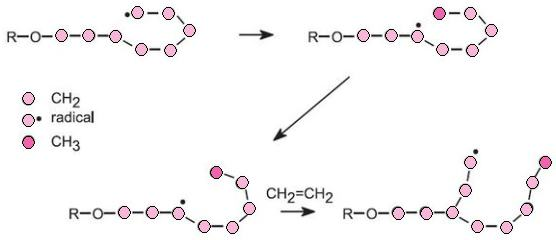 Polymers An Overview