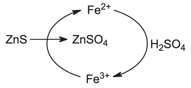 diagram showing the role iron(II) ions in the conversion of zinc sulfide to zinc sulfate.